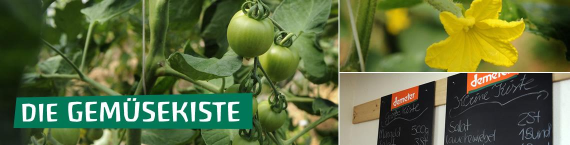 Solidarische Gemüsekiste